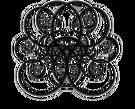 Spiralspiral