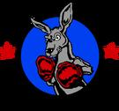 Championship Kangaroo boxing