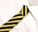 Zīda kaklasaite